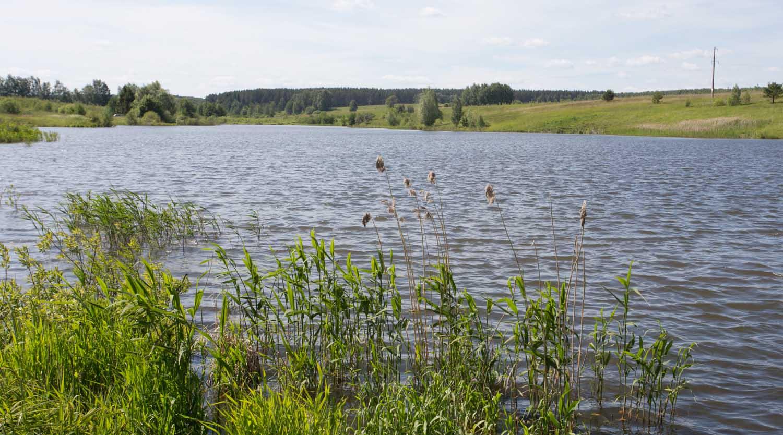 СПИРИНСКОЕ ОзЕРО, озеро КИЛЕЛЕЙКА