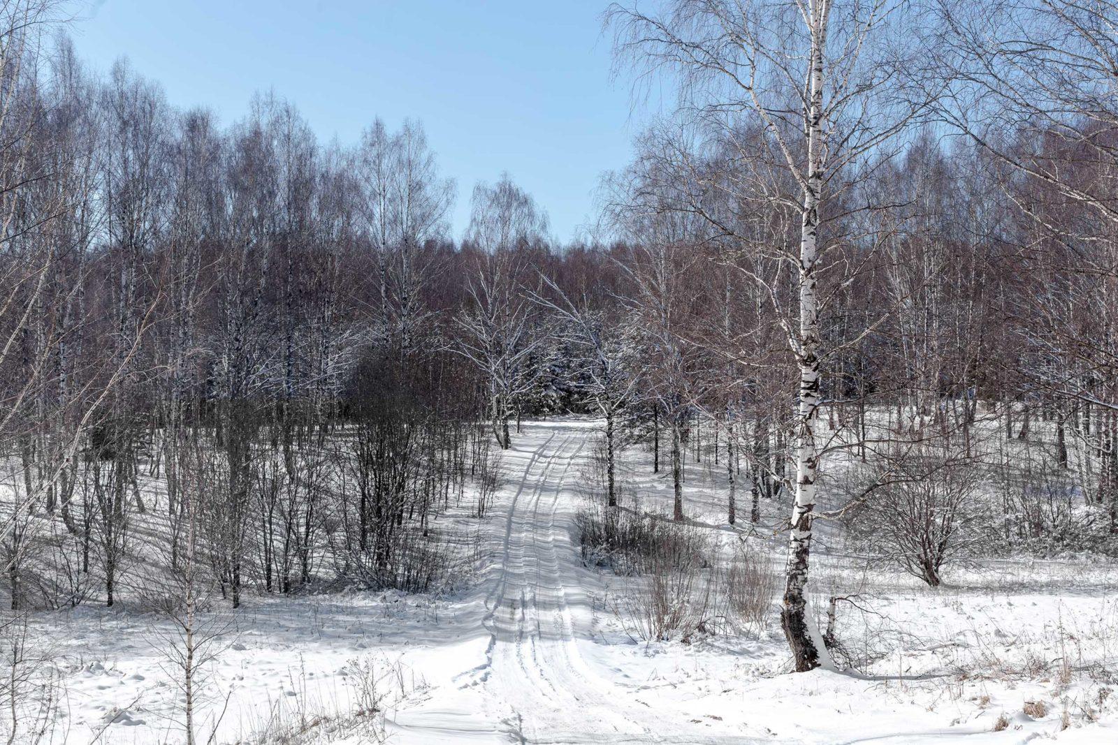 зимняя дорога, снежная дорога