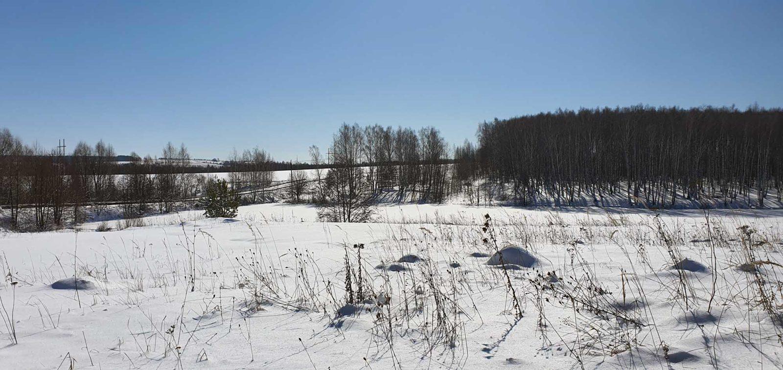 озеро спирино, зима поле