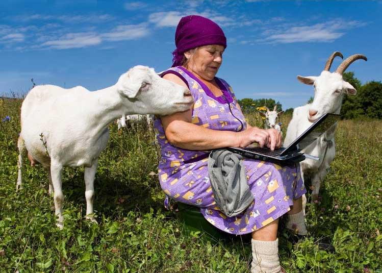 жизнь в деревне, интернет в деревню, интернет на природе, козы, свое хозяйство, переехать в деревню