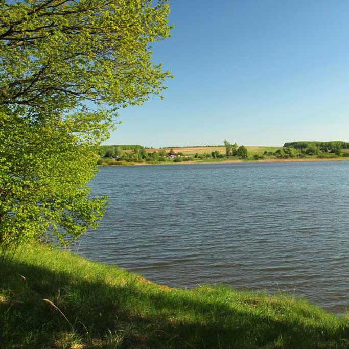 Чижковское озеро богородский район