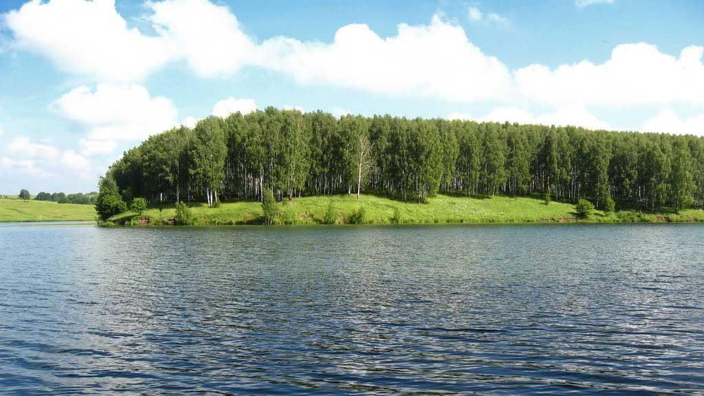 бурцевское озеро богородский район