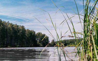 Озера Богородского района